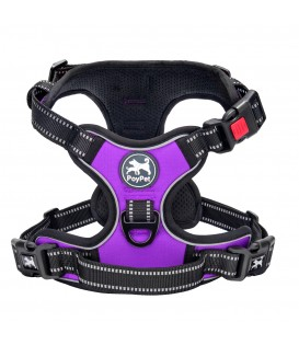 PoyPet No Pull Dog Harness Lockable- 3M Reflective - 2 Metal Front & Back Leash Hooks ( Purple )
