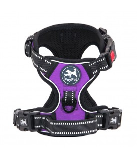 PoyPet No Pull Dog Harness Lockable- 3M Reflective - 2 Metal Front & Back Leash Hooks ( Purple )