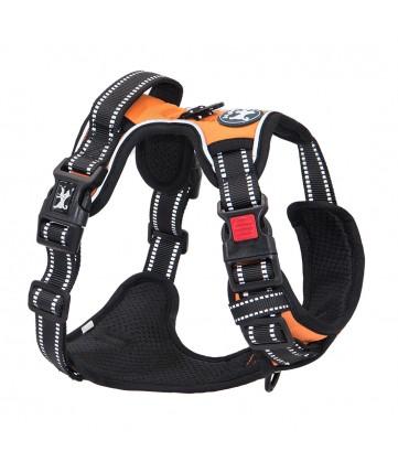 PoyPet  No Pull Dog Harness Lockable - 3M Reflective - 2 Metal Front & Back Leash Hooks ( Orange )