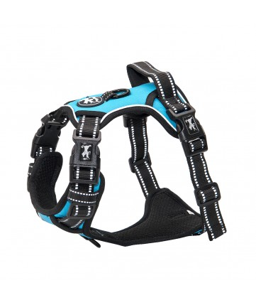 PoyPet 2019 No Pull Dog Harness - 3M Reflective - 2 Metal Hooks - 4 Snap Buckles( Blue )