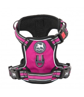 PoyPet  [Upgrated] No Pull Dog Harness  - 3M Reflective - 3 Snap Buckles ( Fushsia )