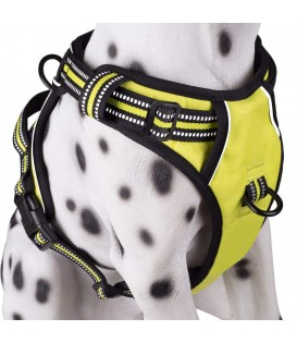 PoyPet 3M Reflective -Easy Control- No Pull Dog Harness ( Green)