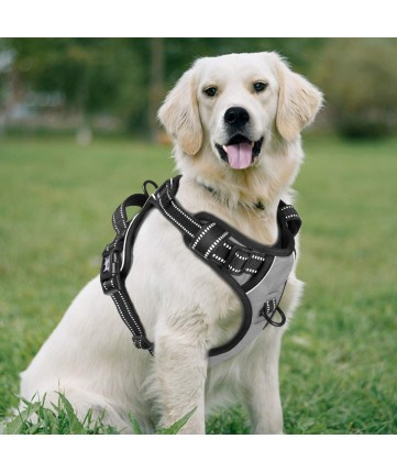 PoyPet No Pull Dog Harness - 2 Snap Buckles - 3M Reflective - 2 Metal Front & Back Leash Hooks With Easy Control Handle ( Grey ,Over The Head Design)