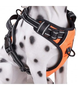 PoyPet 3M Reflective -Easy Control- No Pull Dog Harness ( Orange)