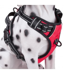 PoyPet 3M Reflective -Easy Control- No Pull Dog Harness (Red)