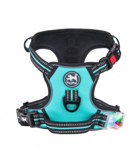PoyPet LED Flashing Light - No Pull Dog Harness ( Tiffany Blue )