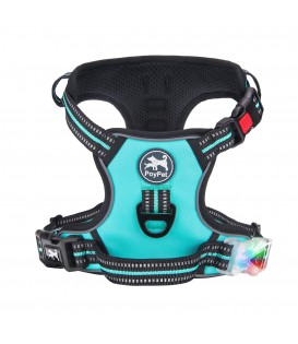 PoyPet LED Flashing Light - No Pull Dog Harness ( Tiffany Blue )