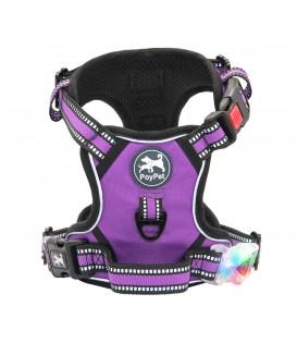 PoyPet LED Flashing Light - No Pull Dog Harness ( Purple )