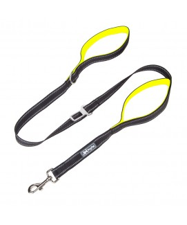 PoyPet  3M Reflective 5 Feet Dog Leash with Car Seat Belt (Green)