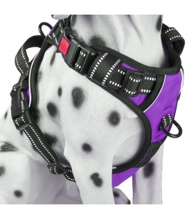 PoyPet 2018 No Pull Dog Harness - 3M Reflective - 2 Metal Front & Back Leash Hooks  - With Easy Control Handle - 3 Snap Buckles ( Purple )